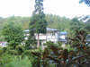 館裏からの風景