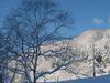山と木 館より400m