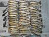 頂き物の伊南川の鮎とカジカ4匹
